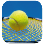TuS Wewelsburg Beitrag Tennis
